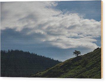 Alone Wood Print
