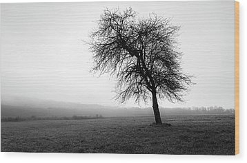 Wood Print featuring the photograph Alone In A Field by Andrew Pacheco