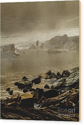 Wood Print featuring the photograph Alone In The Mist by Iris Greenwell