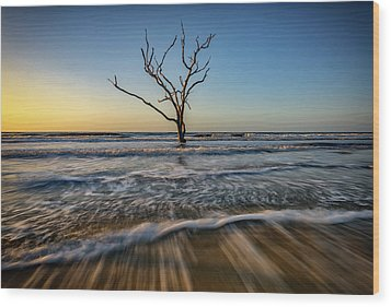 Wood Print featuring the photograph Alone In The Water by Rick Berk