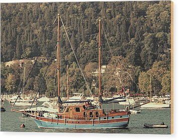 Wood Print featuring the photograph Along The Bosphorus-istanbul by Tom Prendergast