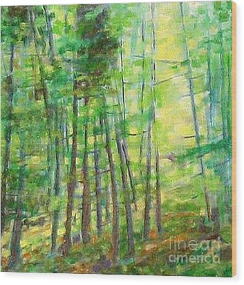 Along Buckslide Road Wood Print by Karen Sloan