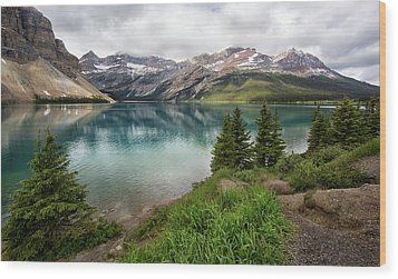 Along Icefields Parkway Wood Print