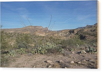 Wood Print featuring the photograph Along The Apache Trail by Joel Deutsch
