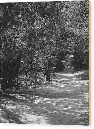 Along The Barr Trail Wood Print by Christin Brodie