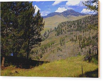 Along The Hell Roaring Creek Trail Wood Print by Marty Koch
