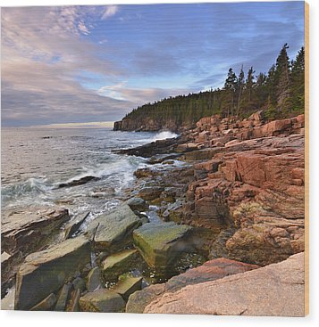 Wood Print featuring the photograph  Along The Maine Coastline by Stephen  Vecchiotti