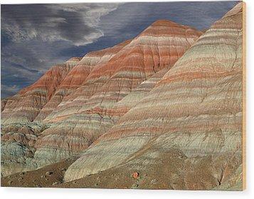 Along The Paria Wood Print