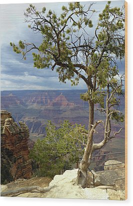 Wood Print featuring the photograph Along The Rim by Gordon Beck