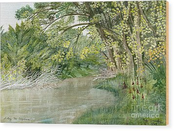 Wood Print featuring the painting Along The Susquehanna by Melly Terpening