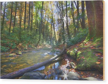 Along The Trail In Georgia Wood Print by Sharon Batdorf