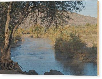 Along The Verde River 9 Wood Print by Susan Heller
