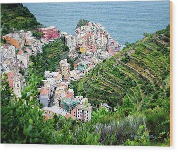 Along The Via Del Amore Wood Print