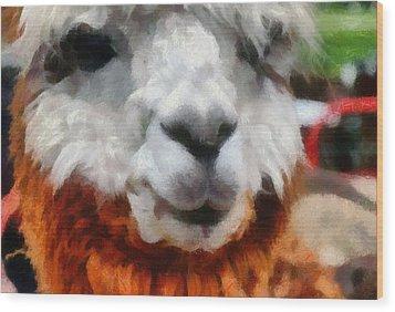 Alpaca Wood Print by Michelle Calkins