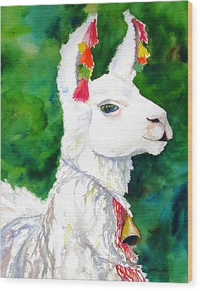 Alpaca With Attitude Wood Print