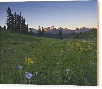 Alpine Dawn Wood Print by Mike  Dawson