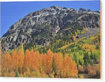 Wood Print featuring the photograph Alpine Loop Road Aspens by Ray Mathis
