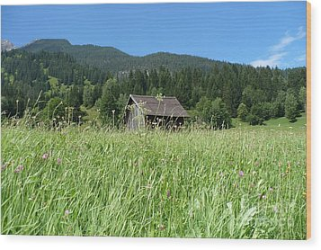Alpine Meadow  Wood Print by Carol Groenen