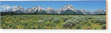 Alpine Meadow Teton Panorama II Wood Print