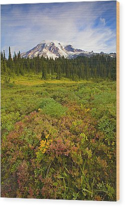 Alpine Meadows Wood Print by Mike  Dawson