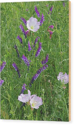 Alpine Vetch And Primroses Wood Print