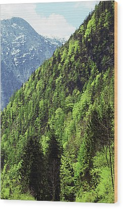 Alpine View In Green Wood Print by Brooke T Ryan