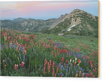 Alpine Wildflowers And View At Sunset Wood Print by Brett Pelletier