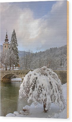 Wood Print featuring the photograph Alpine Winter Beauty by Ian Middleton