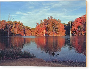 Alum Creek Landscape Wood Print by Angela Murdock
