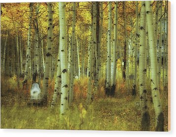 Alvarado Autumn 1 Wood Print