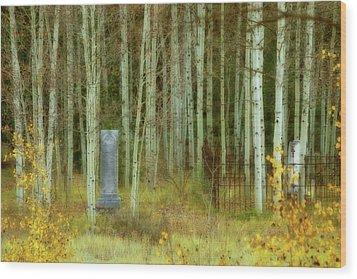 Alvarado Cemetery 41 Wood Print