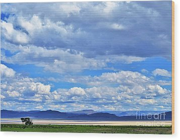 Sky Over Alvord Playa Wood Print by Michele Penner