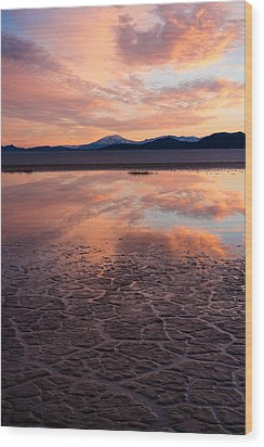 Wood Print featuring the photograph Alvord Sunset by Brian Bonham