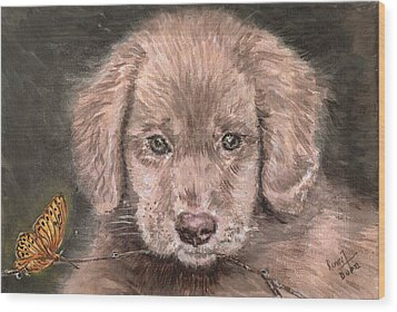 Irish Setter Puppy Dog And Orange Butterfly Wood Print by Remy Francis