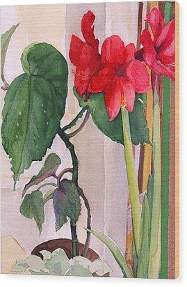 Amaryllis And Begonia Wood Print