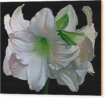 Amaryllis Wood Print by Doug Strickland