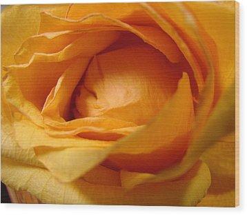 Amber's Rose Wood Print