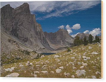 Ambush Peak Wood Print by Peter Skiba