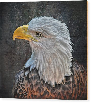 Wood Print featuring the photograph American Bald Eagle by Savannah Gibbs