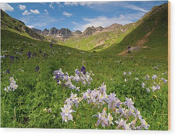 Wood Print featuring the photograph American Basin by Steve Stuller