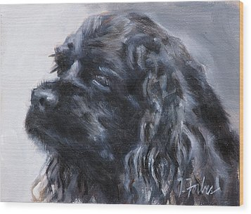 American Cocker Spaniel Wood Print by Isabel Forbes