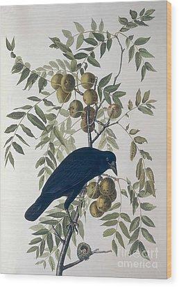 American Crow Wood Print by John James Audubon
