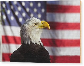 American Eagle Wood Print by David Lee Thompson