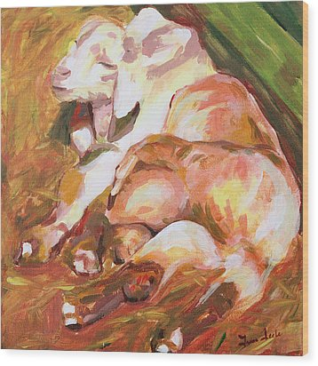 American Farm Sleepy Goats Wood Print