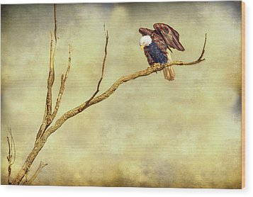 Wood Print featuring the photograph American Freedom by James BO Insogna