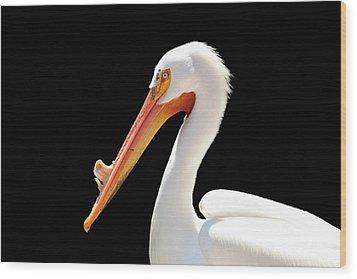 American Pelican Wood Print by Jeannie Burleson
