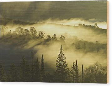 Wood Print featuring the photograph American River Canyon In The Fog by Sherri Meyer