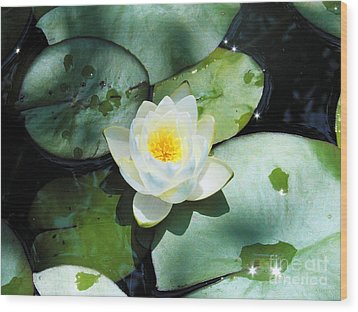 American Water Lilies Wood Print by J Jaiam