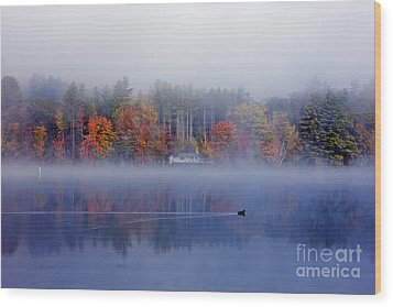Amherst Lake Vt Wood Print by Butch Lombardi