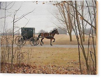 Amish Dream 1 Wood Print
